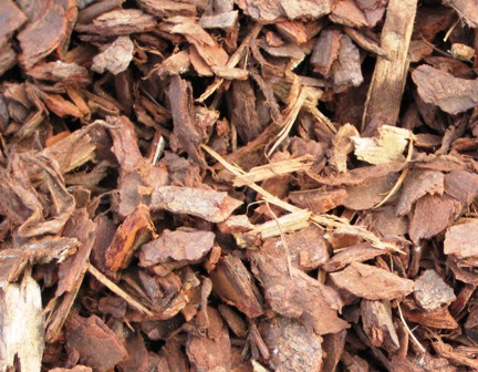 25mm-bark-applications-uses-&-benefits