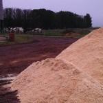 glenara-wood-shavings-sawdust