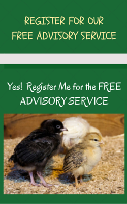 register for our free advisory service