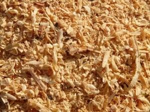 Sawdust Shavings