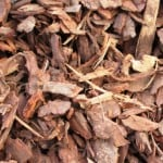 25mm pine bark
