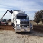 Bob-Cat-Loading-Truck-bulk-delivery-wood-chips